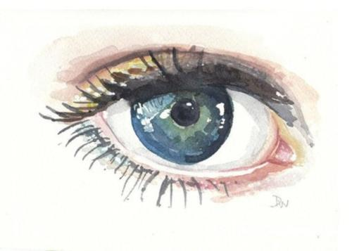 要跟踪学生如何获得LSAT 请注意他们的眼睛