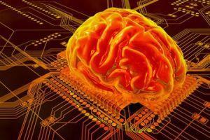 注意力训练可以改善儿童大脑的智力和功能