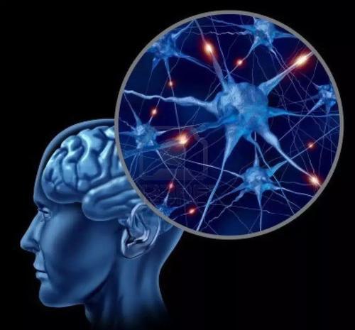 社会意识的增强表明自闭症患者的大脑发生了变化