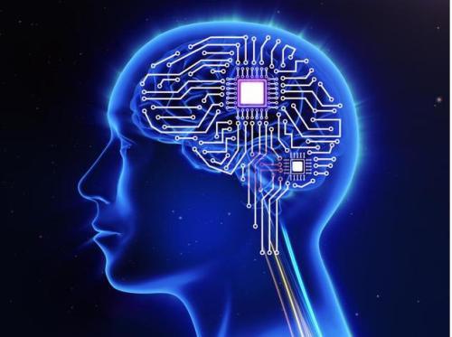 研究人员揭示出构成所有大脑的相同谱系的强弱链接的起源