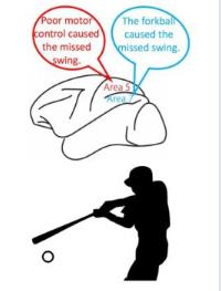 谁犯了错误大脑区分错误原因以进行适应
