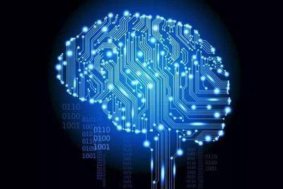 新的研究检测脑细胞改善学习