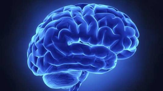 破碎的穿梭可能会干扰主要脑部疾病的学习