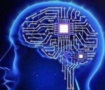 神经学家为教师讲解大脑提供了依据
