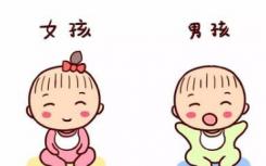 男孩和女孩的大脑发育没有差异