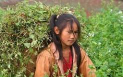 在张桂梅看来贫困对女孩是一种隐私对外她称呼自己的学生山里的女孩