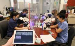 新型显微镜帮助学生安全学习