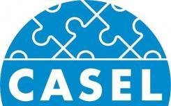 LSI与CASEL合作 为教育工作者提供数字演练工具