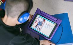 屡获殊荣的虚拟学习数字解决方案