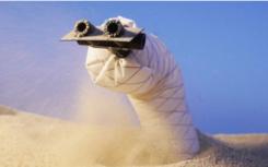 软挖穴机器人可以探索地下世界