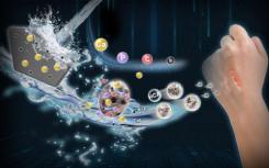 纳米级硼酸盐生物活性玻璃下一代皮肤愈合材料