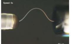 通过生长单晶微纤维制造可弯曲的冰