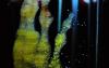 开发水凝胶复合材料以帮助防护装备快速降解有毒神经毒剂