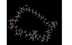 最丰富的有机脂质之一的合成阐明了其结构