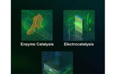 新理论和新材料有助于向清洁能源过渡