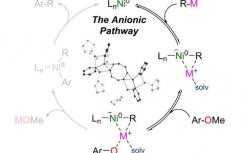 芳香醚的镍催化交叉偶联通过镍酸阴离子进行